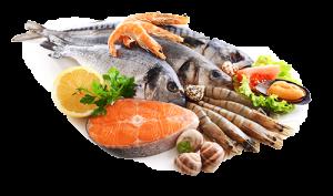 Market Update Seafood